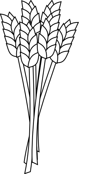 wheat coloring pages - photo#4