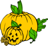 Pumpkins (colour) Clip Art