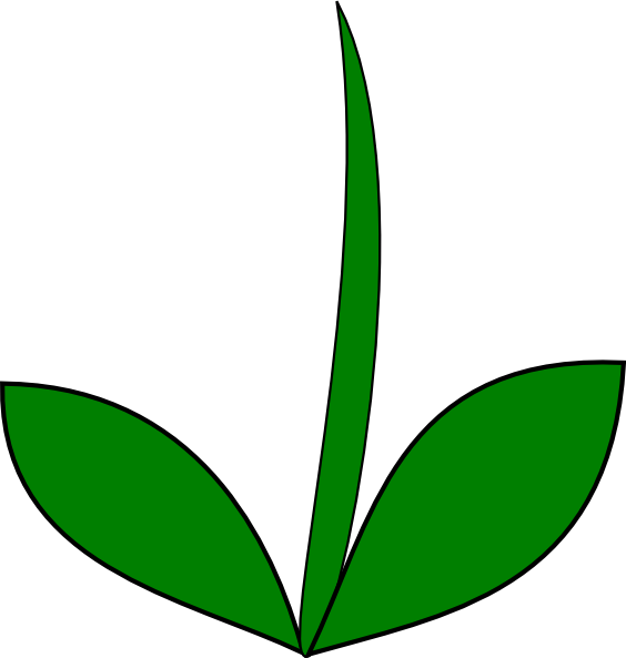 flower leaf clipart - photo #8