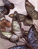 Art Nouveau Clipart For Machine Embroidery Image
