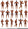 Bodybuilding Poses Names Image