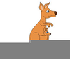 Kangaroo Pouch Clipart Image