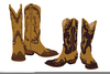 Cowgirl Boots Vector Image
