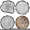 Tree Trunk Clipart Image