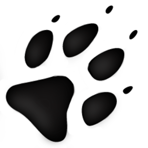 Wolf Track Image