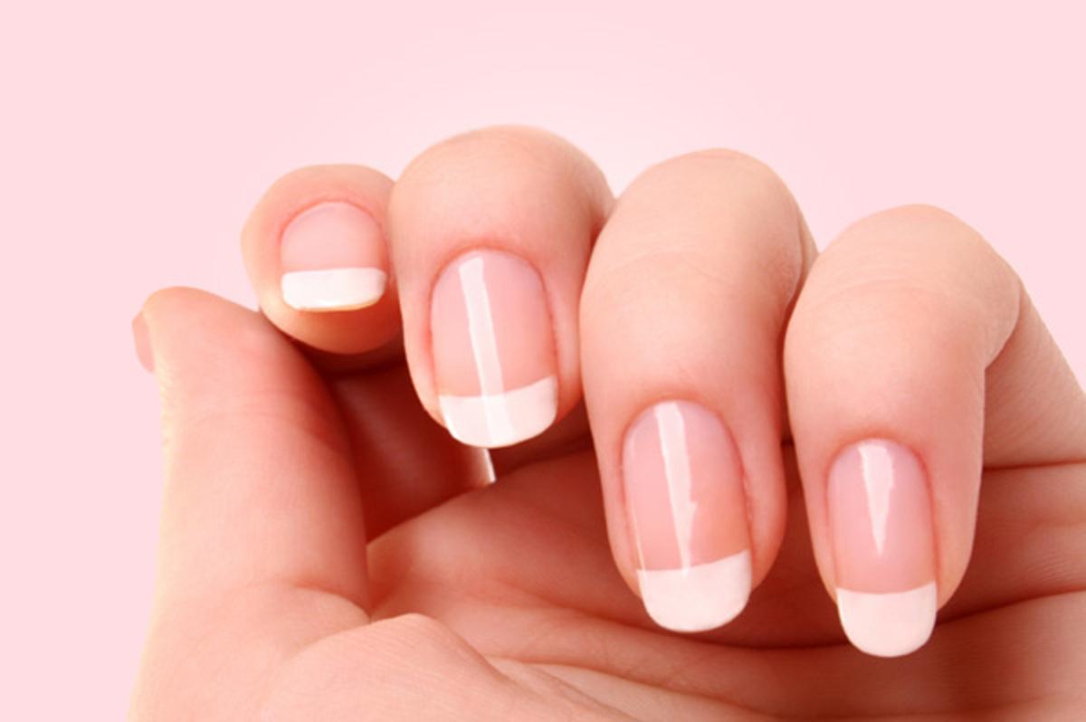 Manicure Clipart Vector clip art online,