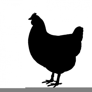 Chicken Silhouette Images Image