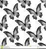 Black And White Clipart Of Butterflies Image