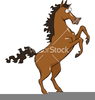 Horse Legs Cartoon Image