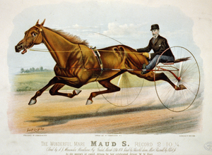 The Wonderful Mare Maud S. Record 2:10 1/4 Image