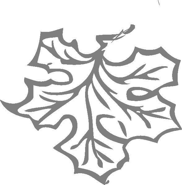 Maple Leaf Outline Clip Art At Clker Com