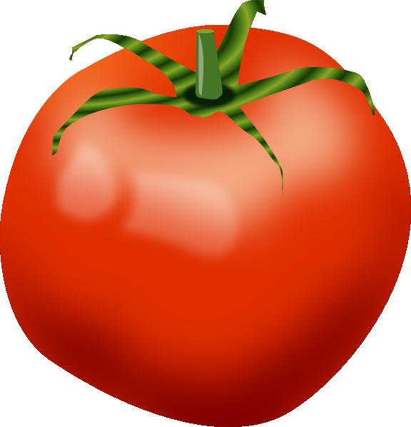Tomato Clip Art at Clker.com - vector clip art online ...