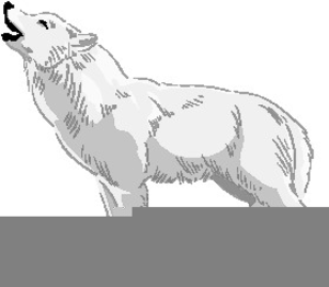 Arctic Wolf Clipart Image