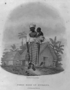 Negro Mode Of Nursing Image