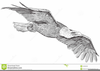 Eagle With Pencil Clipart Image