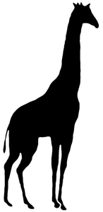 Animal Silhouettes Image
