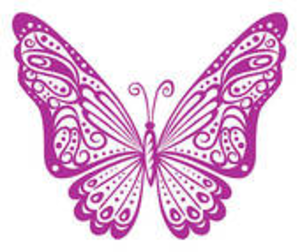 Attractive Violet Butterfly Image