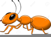 Clipart Grasshopper And The Ant Image