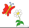 Free Butterfly Clipart For Mac Image
