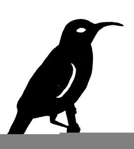 resources clipart free images at clker com vector clip art rh clker com Eye Clip Art Idea Clip Art