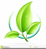 Clipart Green Leaf Logo Icon Image