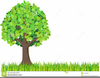 Apple Tree Clipart Image