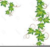 Flowering Vines Clipart Image