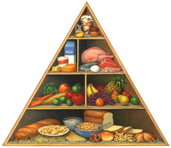 Nutrition Pyramid | Free Images at Clker.com - vector clip ...