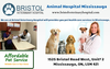 Animal Hospital Mississauga Hours Emergency Bristol Veterinary Hospital Image