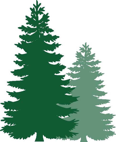 Leaf Pine Tree Pine Tree Border Free Clipart