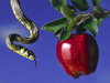 Apple And Snake Image
