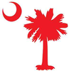 Sc Palmetto Tree Image