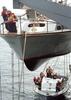Sailors Man  Monkey Line Image