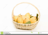 Clipart Basket Of Mangoes Image