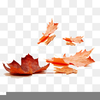 Fall Leaves Clipart Image