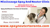 Mississauga Spay And Neuter Clinic Image