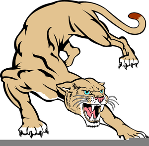free cougar clipart pictures | free images at clker.com - vector clip art  online, royalty free & public domain  clker