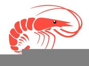 steak and shrimp clipart free images at clker com vector clip rh clker com Shrimp Boil Clip Art Shrimp Boat Clip Art