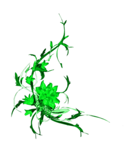 Green Floral Design Image
