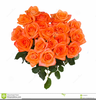 Clipart Bunch Of Roses Image