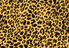 Animal Print Textures Clipart Image