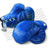 Boxing Gloves Blue 6 Image