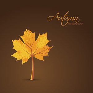 Autumn Tree Background Image