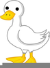 Oregon Duck Feet Clipart Image