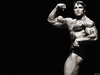 Arnold Famous Pose Image