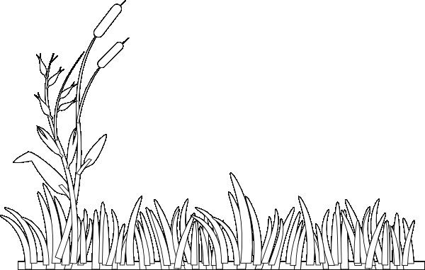 Cattails Outline Clip Art At Clker