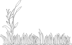 Cattails Outline Clip Art