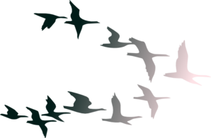 Birds In Flight Clip Art