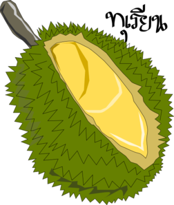 Durian Fruit Clip Art