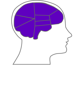 Head And Brain Outline2 Clip Art